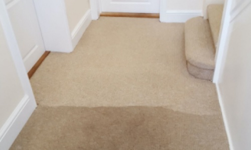 Why choose FAB Carpet Cleaning for your floor care needs