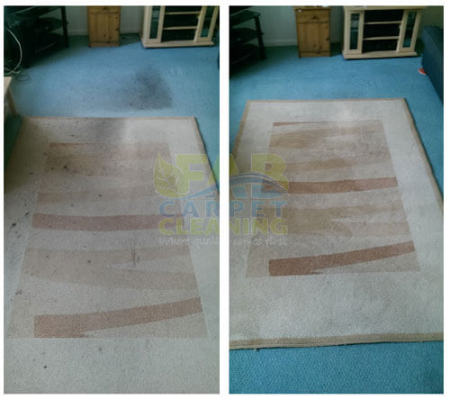 Fab Carpet Cleaning Rug